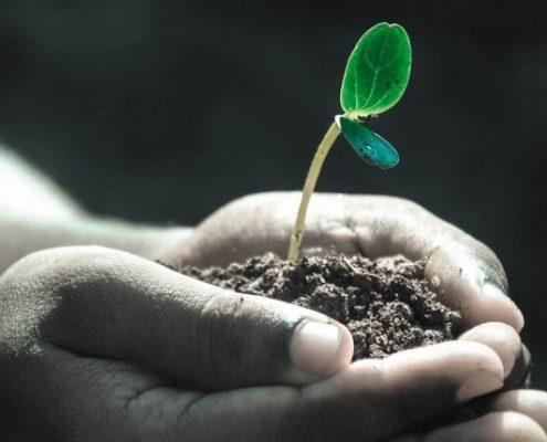 Unser Prinzip der Nachhaltigkeit - Soulcover